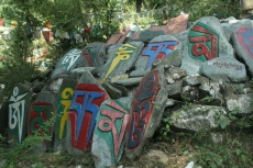 In MecLeod Ganj (bzw. Upper Dharamsala) - wo der Dalai Lama im Exil lebt.