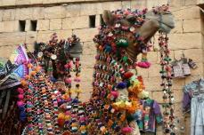 Geschmücktes Kamel zu einer Festlichkeit in Jaisalmer
